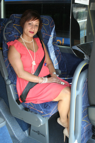 Megabus.com double-decker buses have been equipped with three-point lap/shoulder seat belts since 2006 and are ...