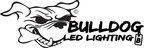 Bulldog LED Lighting and Rockstar Performance Garage have a lot to show off at SEMA 2014
