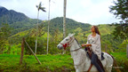 Explore Colombia like never before. Visit travelocity.com/letsroamcolombia.  (PRNewsFoto/Travelocity)