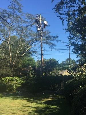Linemen repairing damage to a power pole behind a residential neighborhood near Savannah.