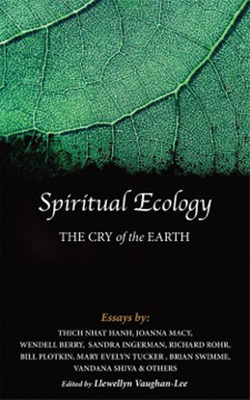 Purchase Now - Spiritual Ecology: The Cry of the Earth