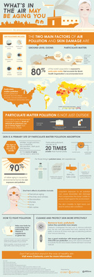 Infographic: Snapshot of pollution - its sources, its ubiquity, its aging effects on skin and Clarisonic's skincare solution. (PRNewsFoto/Clarisonic)