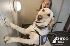 Hero Is A Four-Legged Word: The Maker Of NexGard® (Afoxolaner) Presents Hero Tails Video Series To Help Pair More Assistance Dogs With People In Need