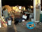 Animal Hoarding (PRNewsFoto/SI Restoration)