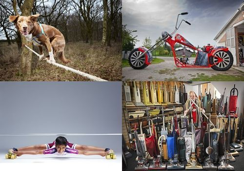 FASTEST CROSSING OF A TIGHTROPE BY A DOG – FROM THE UK! WORLD'S LARGEST MOTORCYCLELOWEST LIMBO SKATER, LARGEST COLLECTION OF VACUUM CLEANERS – FROM THE UK! (PRNewsFoto/GUINNESS WORLD RECORDS)
