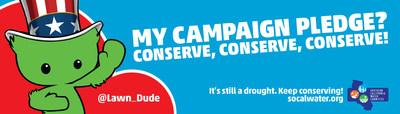 My Campaign Pledge? Conserve, Conserve, Conserve!