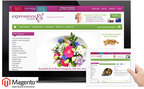 Professionally designed and developed eCommerce websites.  (PRNewsFoto/Magento eCommerce)