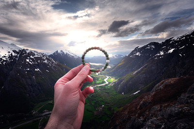 lokai Launches Limited-Edition wild lokai To Support World Wildlife Fund