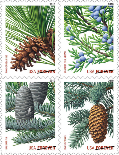 New Holiday Evergreen Forever Stamps coming this fall.  (PRNewsFoto/U.S. Postal Service)