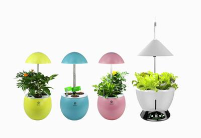 Hydroponic planter
