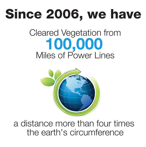 FPL reaches 100,000-mile milestone of cleared trees and palm fronds from power lines with goal of