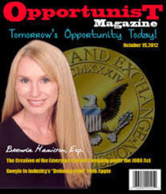 Brenda Hamilton Boca Raton, Securities Attorney.  (PRNewsFoto/Securities Lawyer 101)