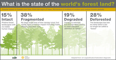 """Despite losses to forests over time, there are signs of hope. Momentum is building to protect and restore forests globally. Intact: Pristine forest landscapes with no visible human impact. Fragmented: No large-scale loss of tree canopy cover, but visible signs of human impact including roads, villages, and clear cuts. Degraded: Canopy is reduced, but enough trees remain to meet standard definition of """"forest"""". Deforested: The landscape has lost so many trees it can no longer be called a """"forest""""."""