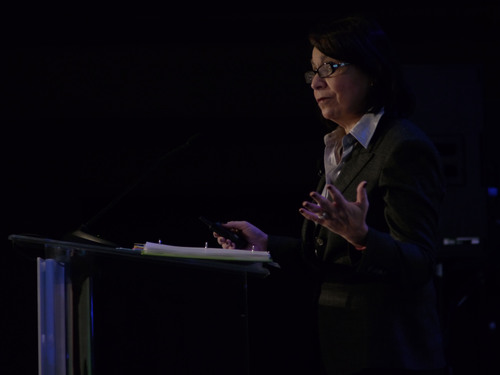 Linda Goldstein, Manatt Phelps & Phillips LLP Addresses PMA's Marketing Law Conference.  (PRNewsFoto/PMA)