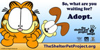 Help Garfield and Odie spread the #shelterpetlove