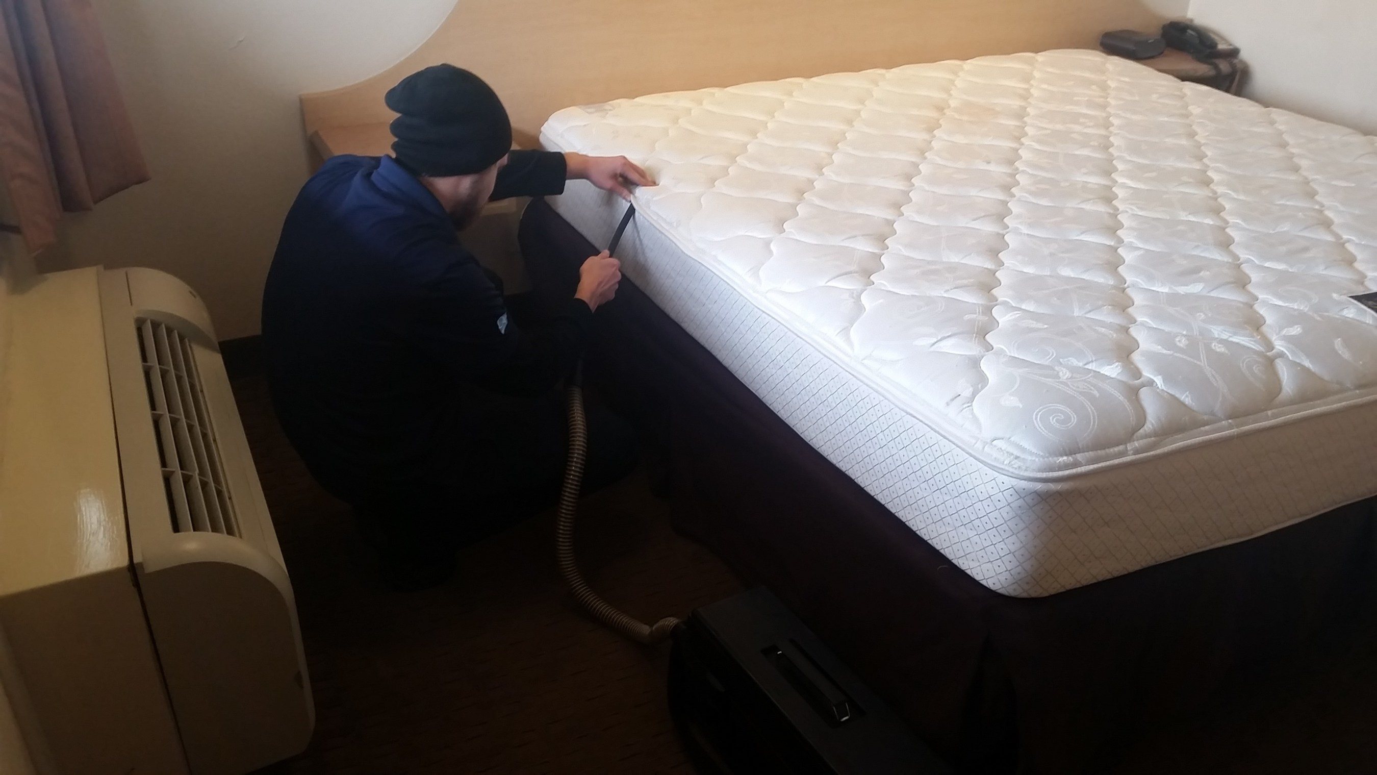 As Bed Bugs Continue to Haunt Major Cities, EcoRaider® Natural Solution Proves It Can Kill the Pest