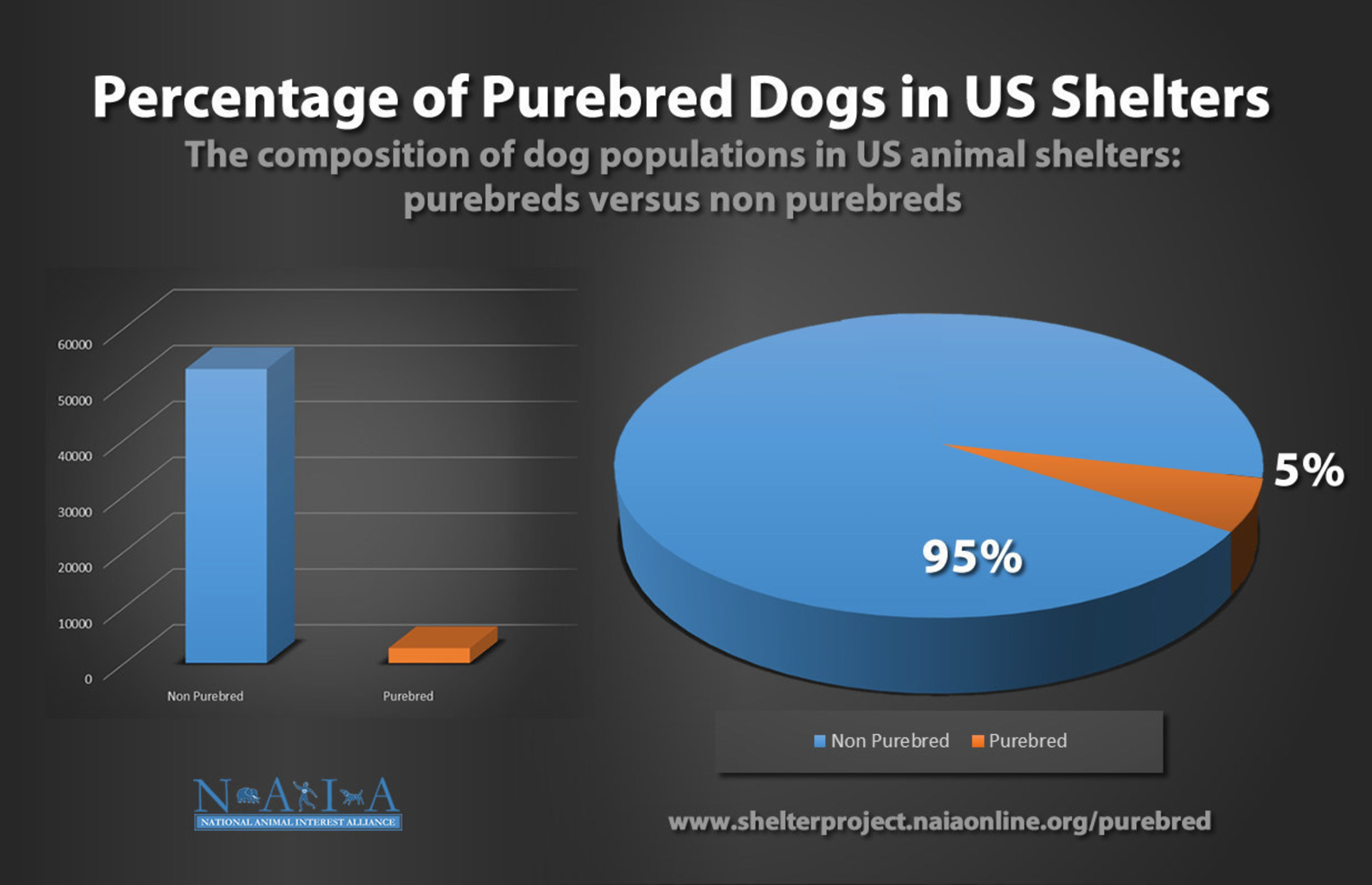 Percentage of Purebred Dogs in US Shelters