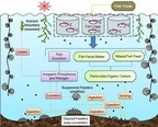 Le projet d'aquaculture durable à Grenade offre une nouvelle citoyenneté grâce à des opportunités d'investissement