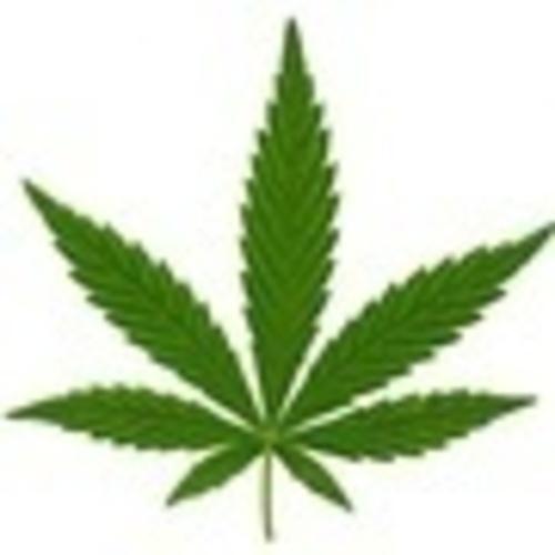 Spokannabis Fest Logo (PRNewsFoto/Spokannabis Fest)