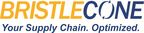 Bristlecone India Limited Logo