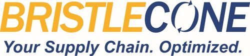Bristlecone India Limited Logo (PRNewsFoto/Bristlecone India Limited)