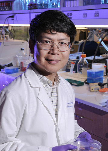 """The National Academy of Sciences (NAS) today announced the election of Dr. Zhijian """"James"""" Chen, professor of molecular biology, who holds the George L. MacGregor Distinguished Chair in Biomedical Science and is also a Howard Hughes Medical Institute investigator at UT Southwestern Medical Center. (PRNewsFoto/UT Southwestern Medical Center)"""
