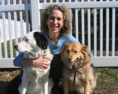 Dr. Fallek With Destiny & Savannah (PRNewsFoto/Holistic Vet)