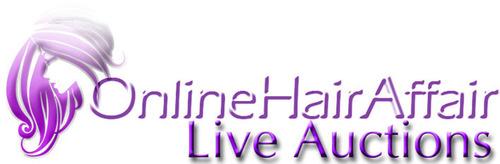 Online Hair Affair Live Auctions.  (PRNewsFoto/Online Hair Affair)