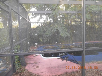 This Bank of America foreclosure in a Latino neighborhood in Orlando, FL, has an unsecured pool area.  Dirty standing water on the pool cover and inside the pool makes a perfect breeding ground for mosquitoes.