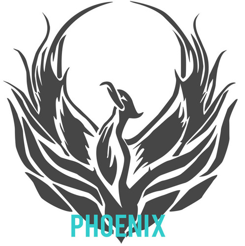 Phoenix; PhotoBiz's New Content Management System.  (PRNewsFoto/PhotoBiz)