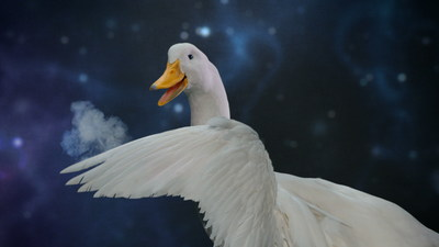 The Aflac Duck has a few magic tricks up his wing in the company's newest television commercial.