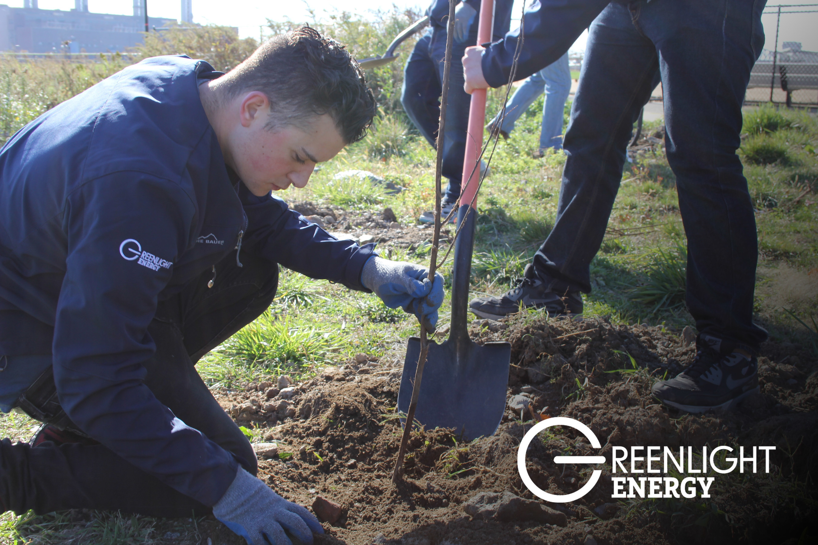 Greenlight Energy Powers Forward with New Solar, LED Lighting and Renewable, Fixed-Rate Energy Plans. Greenlight has also put their money-and muscles-where their mouth is, donating and planting nearly 400 trees to Randall's Island parks to commemorate America Recycles Day last month.  GOGREENLIGHTENERGY.COM