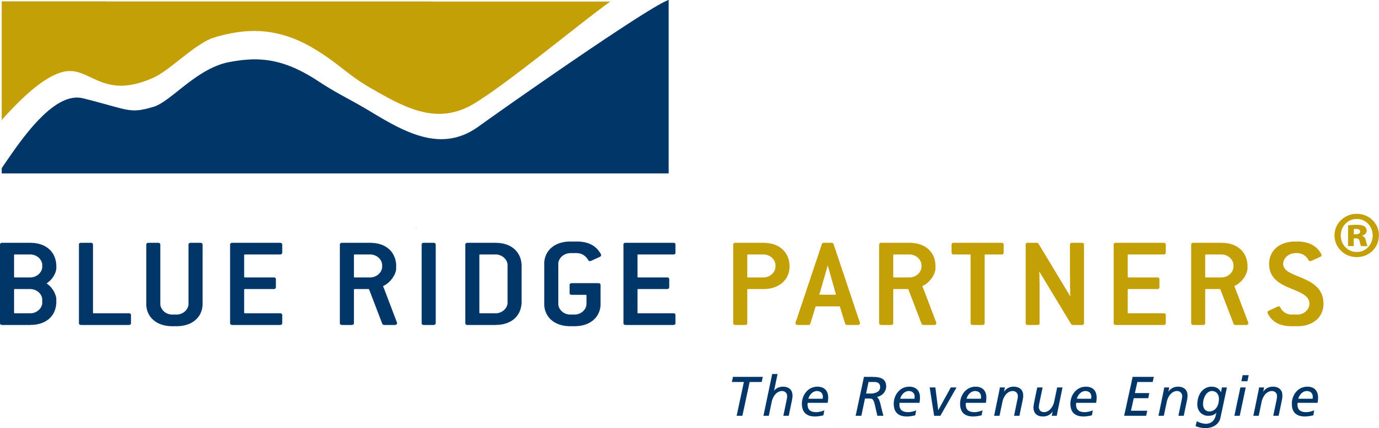 Blue Ridge Partners is exclusively focused on helping companies accelerate profitable revenue growth