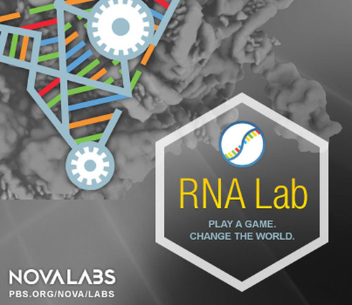 In NOVA's RNA Lab, citizen scientists learn how they can advance biomedical research just by playing a game. (PRNewsFoto/NOVA Labs; WGBH Boston)