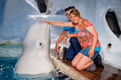 SeaWorld Kids - the kid-focused entertainment program of SeaWorld - is launching a new initiative to inspire ...