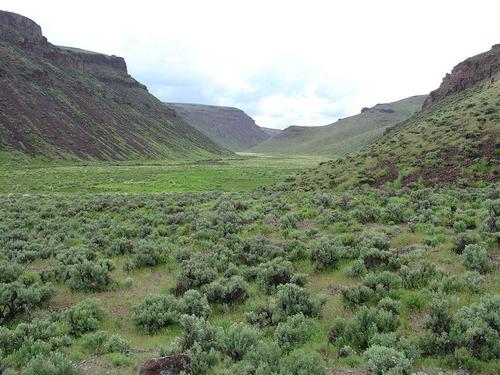 East Fork High Rock Canyon Wilderness.  (PRNewsFoto/The Wilderness Land Trust)