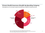 Chart: Breakdown of Private Health Insurance Benefits by Spending Category.  (PRNewsFoto/PwC)