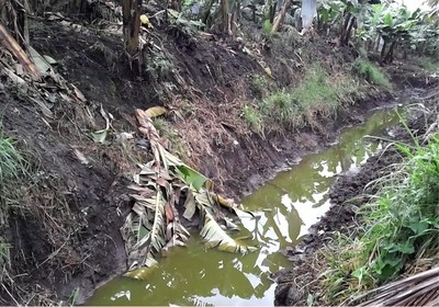 Polluted open waterway bordering schools and homes, municipality of Tiquisate, department of Esquintla, Guatemala.