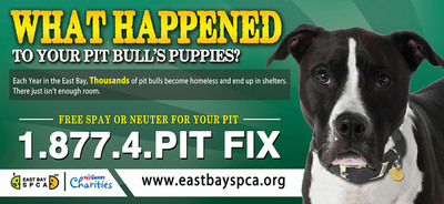 East Bay SPCA Launches Billboard Campaign to Promote Free Pit Fix Program