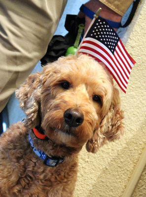 Nestle Purina is celebrating Veterans Day with three days of military-focused events for Purina associates and spotlighting job opportunities for Veterans across the U.S.