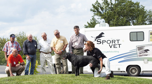 Canine rehabilitation therapist and veterinarian Dr. Jennell Appel demonstrates stretching techniques for ...
