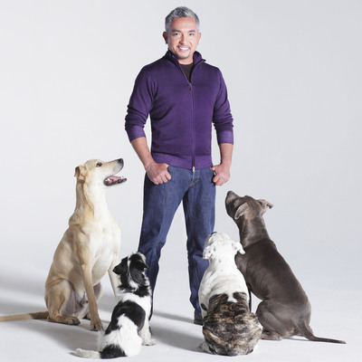 The Animal League Honors Dog Expert Cesar Millan @ DogCatemy Dinner in NYC, 12-8.  (PRNewsFoto/North Shore Animal League America)