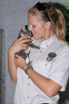 A Crystal crew volunteer comforts a kitten during a You Care, We Care excursion to an animal shelter.  (PRNewsFoto/Crystal Cruises)