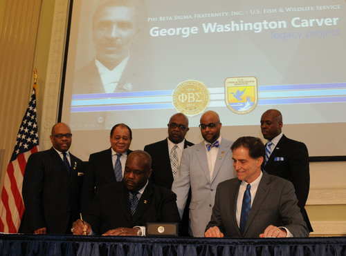 Phi Beta Sigma Fraternity, Inc. (Sigma) International President Jonathan A. Mason signs MOU agreement with US Fish and Wildlife Services Director Dan Ashe. Standing L - R: Sigma Deputy Director Steve Ballard, Sigma Beta Club Foundation President and Past International President Arthur Thomas, Sigma Executive Director Daryl Anderson, Sigma Partner Liaison Kevin Davis, & Sigma International Director of Education Jean B. Lamothe. Seated L - R: Sigma President Jonathan A. Mason and USFWS Director Dan Ashe (PRNewsFoto/Phi Beta Sigma Fraternity, ...