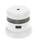 Packing all the power of an advanced photoelectric smoke alarm into a miniature design, the hottest product in fire safety, the First Alert(R) Atom(TM), is a 2013 Chicago Innovation Award winner.  (PRNewsFoto/First Alert)