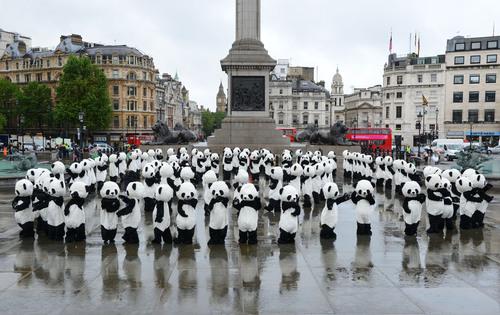 Panda-mônio em Londres no Lançamento da Semana de Conscientização sobre Pandas de Chengdu