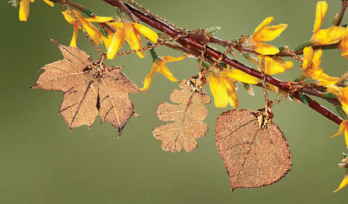 Seasonal Trend Turns Over A Luxurious New Leaf
