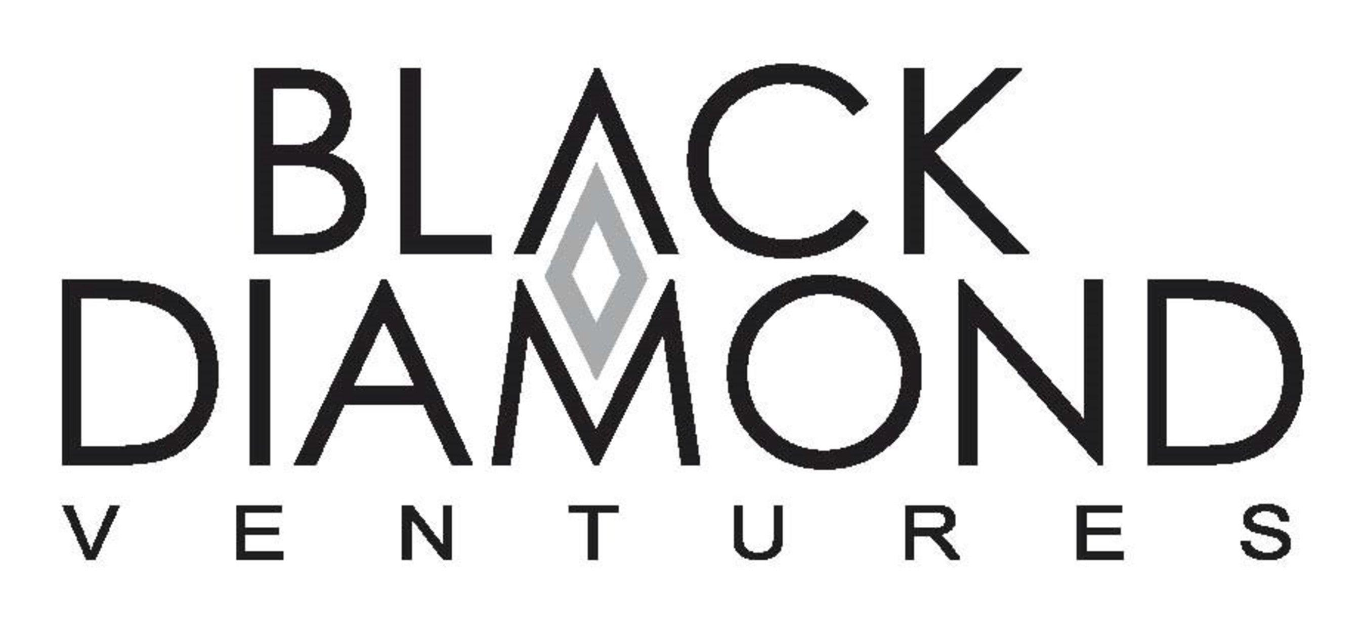 Black Diamond Ventures Logo