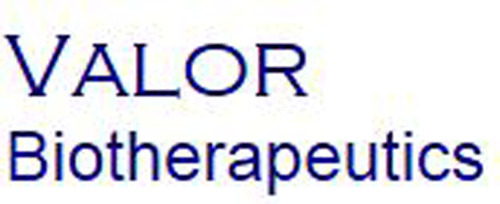 Valor Biotherapeutics is a joint venture between ImmunGene, Inc. and Caliber Biotherapeutics, LLC focused on the clinical development and commercialization of next generation of monoclonal antibody-based therapeutics to treat cancer.  (PRNewsFoto/Valor ...