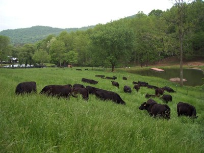 Walnut Hollow Ranch in Hayesville, NC, received a grant geared toward improving their ability to market humane products. (PRNewsFoto/Food Animal Concerns Trust)